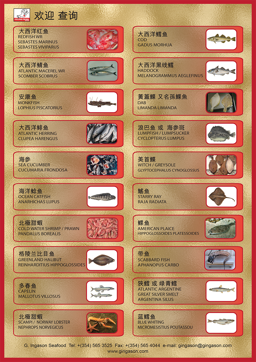 G. Ingason Sefood CHINA Productlist