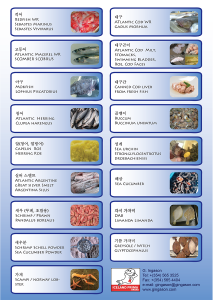 G.Ingason_Korea_Productlist
