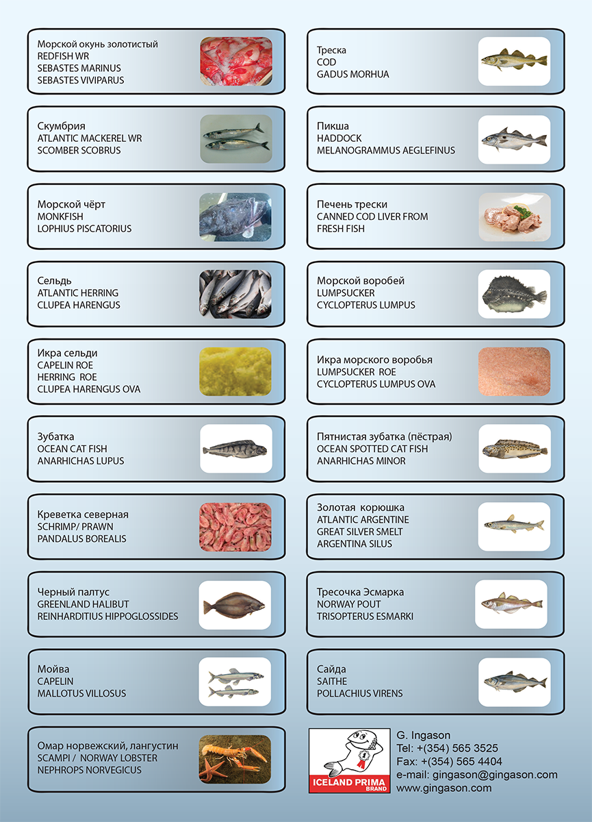 Russian Productlist G. Ingason Seafood