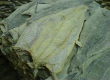 Dried Saithe Splitted